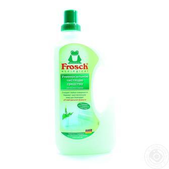 Засоби для чищення та прибирання Frosh