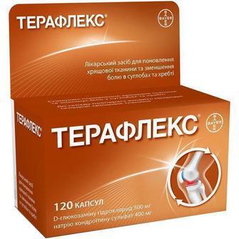 Терафлекс капсулы №120