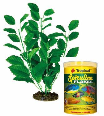 Корм для риб Tropical 100ml + Рослина шовк. L4 25 см
